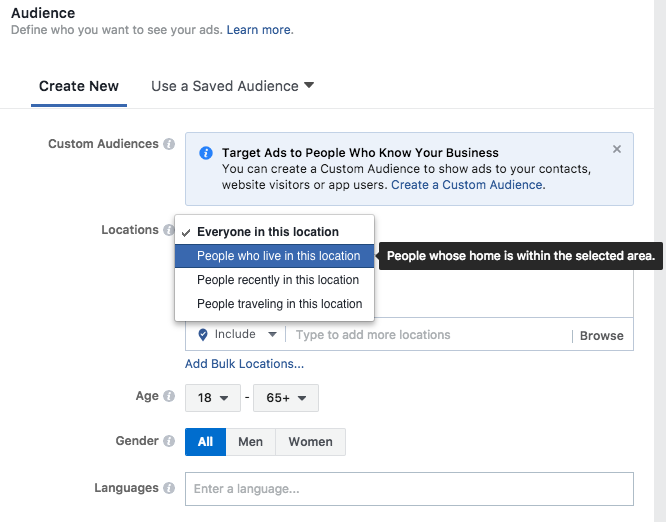 Screen Grab of the Facebook Custom Audience Feature